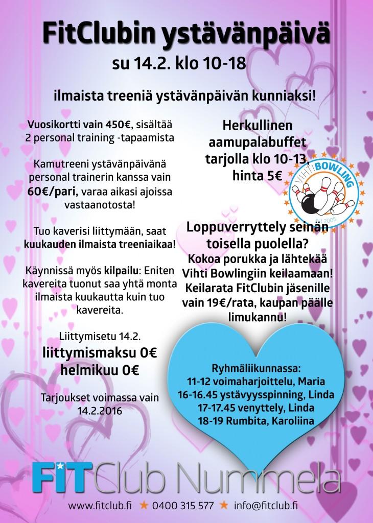 ystis_netti